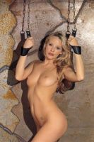 - Arm - ophang boeien, zonder ketting, met D - ring